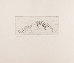 """""""Hatching Poem"""" Intaglio print with chincole. 2005"""