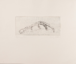 """Hatching Poem"" Intaglio print with chincole. 2005"