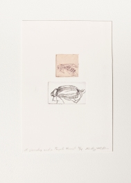 """""""A Junebug and a Purple Hornet"""" Intaglio print with chincole. 2005"""