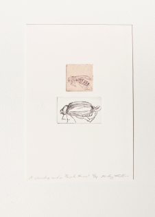 """A Junebug and a Purple Hornet"" Intaglio print with chincole. 2005"